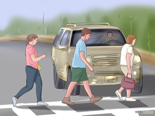 nhường đường cho người đi bộ